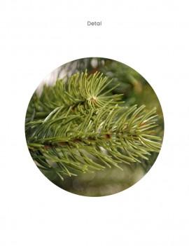 Choinka/ Tree Tundra 240cm